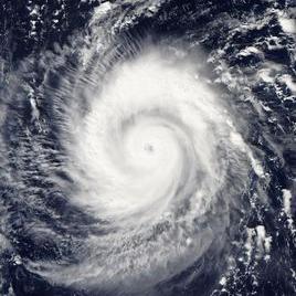 台风博罗依