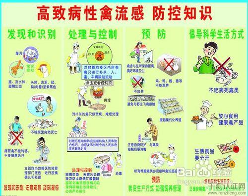 如何预防禽流感_该如何预防h7n9禽流感