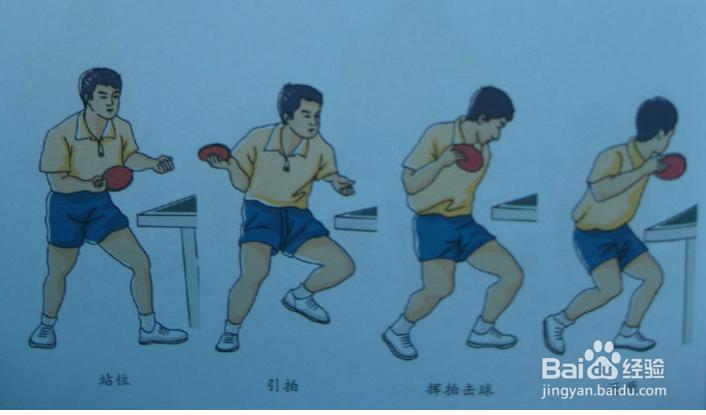 乒乓球发球技术总结斗牛意外图片
