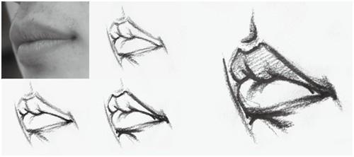 四分之三侧面嘴部画法图片