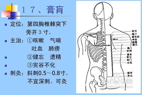 拭腰骶部在那个位置�_呼吸,循环,消化和泌尿生殖系统病症头颈,眼,耳,鼻病症被腰骶部及