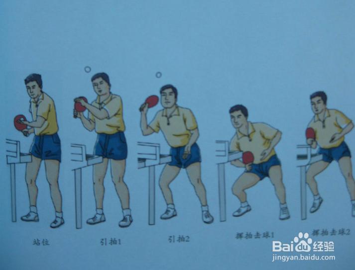 乒乓球发球技术总结北戴河摩托艇自己开吗图片