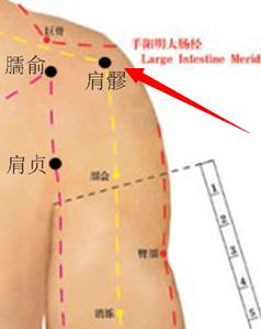 色咪网老穴人体_肩髎穴属于手少阳三焦经穴位图,肩髎穴位于人体肩部,肩髃后方,当臂外