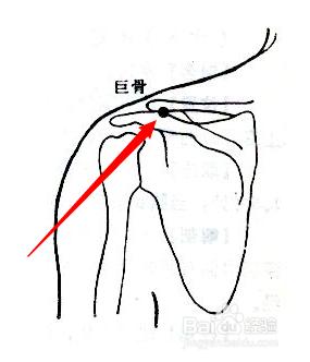 巨骨穴属于手阳明大肠经,巨骨穴位于人体的肩上部,当锁骨肩峰端与肩胛
