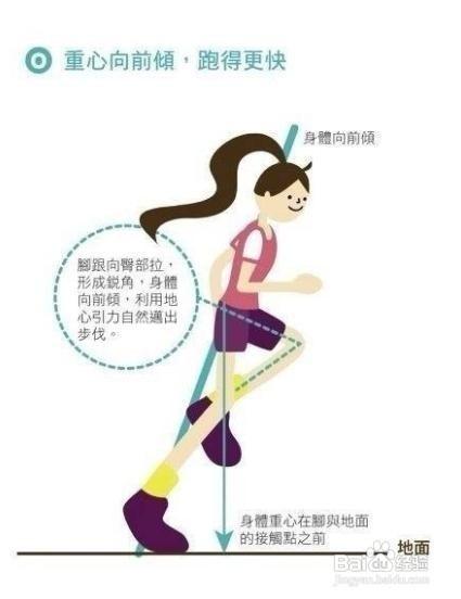 荷叶/减肥>减肥4彻底消耗时尚的荷叶时间坚持跑步30分钟之后减肥是在脂肪灰美容图片
