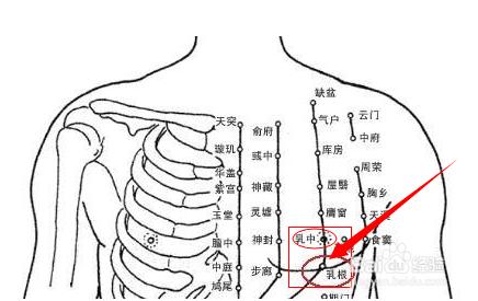 色咪网老穴人体_乳根穴位于人体的胸部,当乳头直下,乳房根部,当第5肋间隙,距前正中线