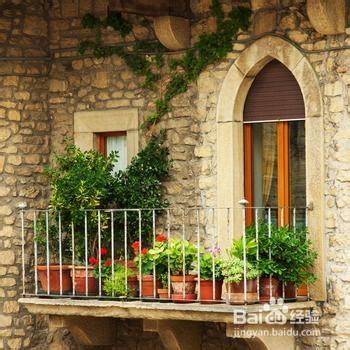 生活/家居 家具装修 > 装修  3 阳台种花草要注意些什么?