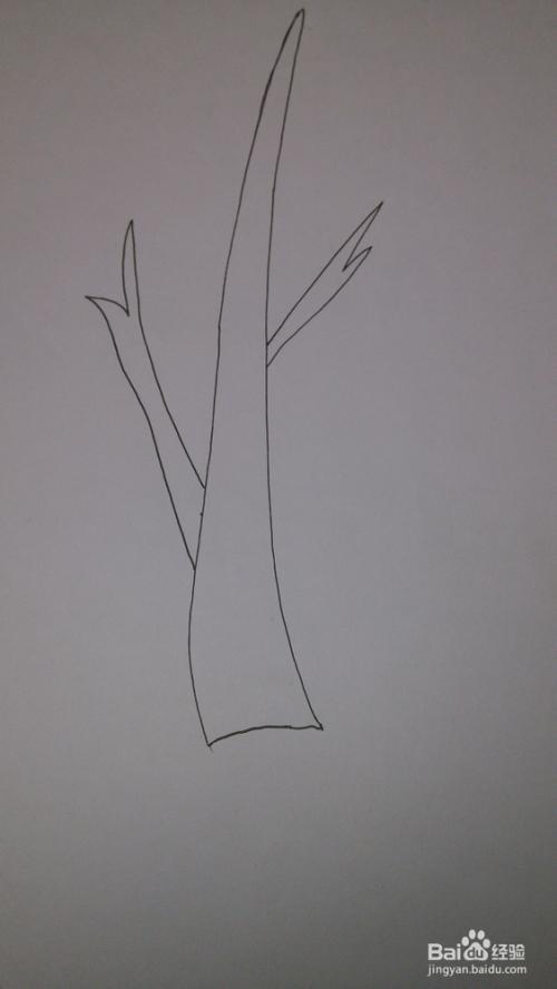 小树苗的简笔画法