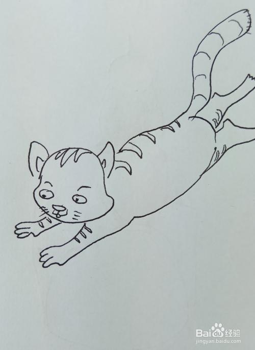 怎样画儿童简笔画【奔跑的猫】?