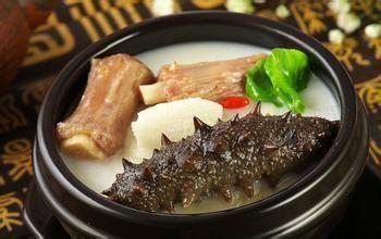 野生学名的海参蛤蜊骚价值营养是图片