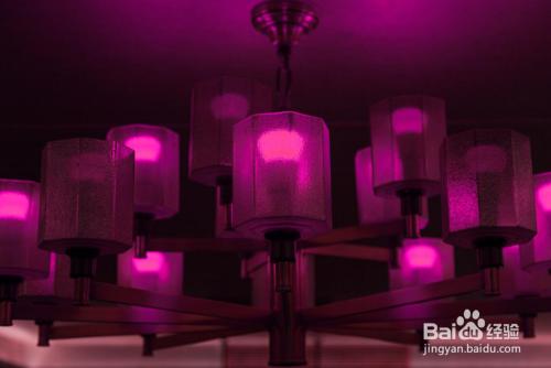 色嗨色影院_切换自如 通过对灯光颜色和亮度的设置,营造出不同的氛围,影院,ktv