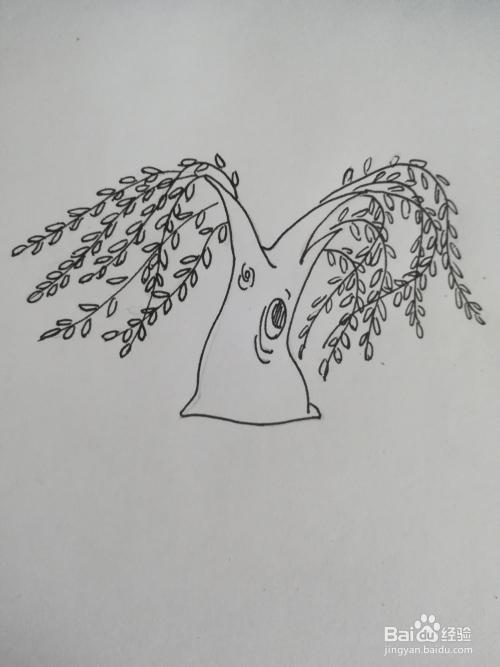 的歌_怎么画柳树简笔画,怎么画树简笔画卡通画