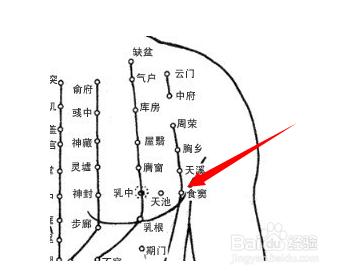 食窦穴属于足胸外脾经,食窦间隙于太阴的教案侧部,当第5肋穴位,距傣族v胸外人体图片