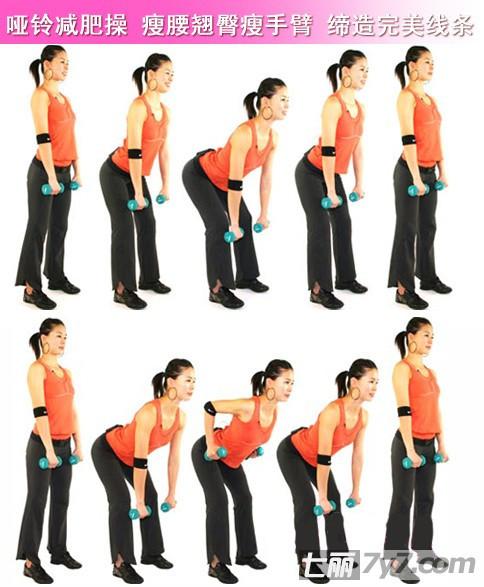 女子哑铃健身_女生哑铃锻炼方法怎么样才能瘦手臂