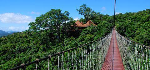 运动/户外 旅行攻略 > 国内游     第三天:亚龙湾热带天堂森林公园图片