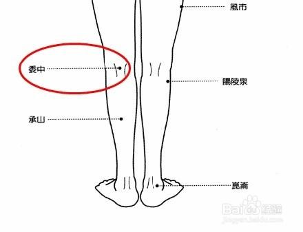 刮痧系列之瘦大腿的好办法减肥小腿睡前怎样减委中图片