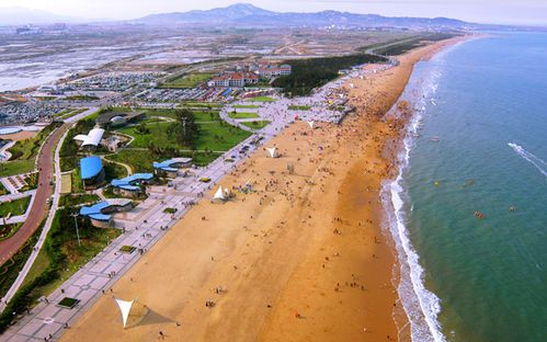 3 下午可以坐北沿海旅游专线来到著名的海滨国家森林公园,门票40元.