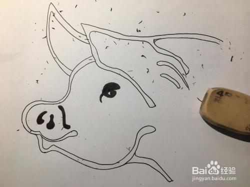 2019猪年来了画一只卡通猪吧 猪头简笔画 儿童画图片