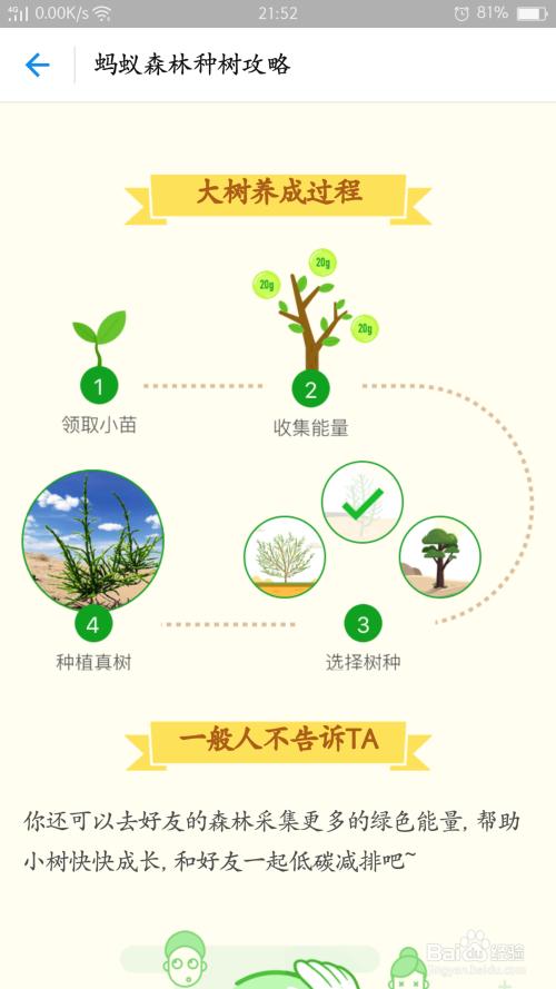 支付宝——蚂蚁森林种树技巧