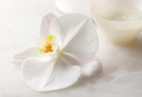 怎样让香薰油充满爱,温暖与幸福感