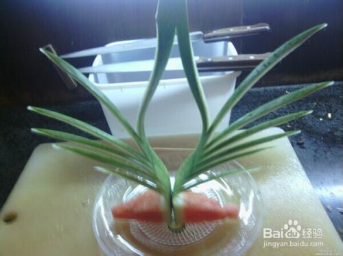 教你在家里做ktv水果拼盘西瓜皮草皮花图片