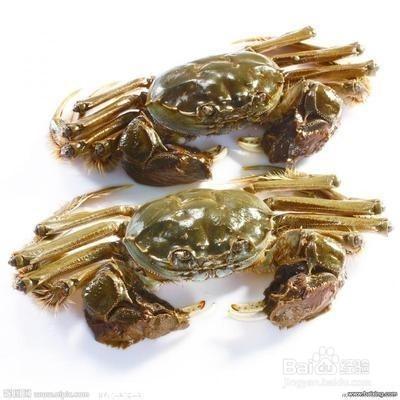区别河蟹和海蟹爆炒蛏子大厨图片