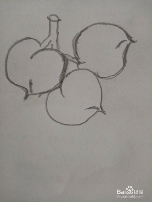 桃子组合的简易画法图片