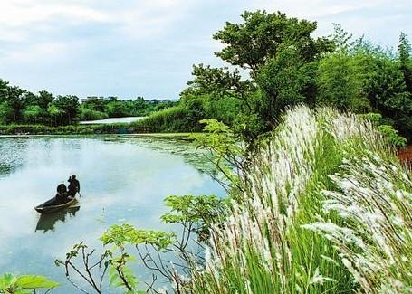 杭州西溪攻略公园v攻略大全刺客360xbox信条攻略4湿地图片