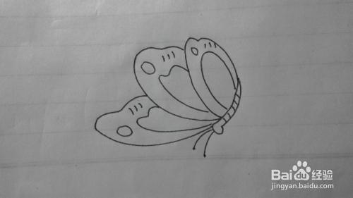 简笔画之蝴蝶的画法图片