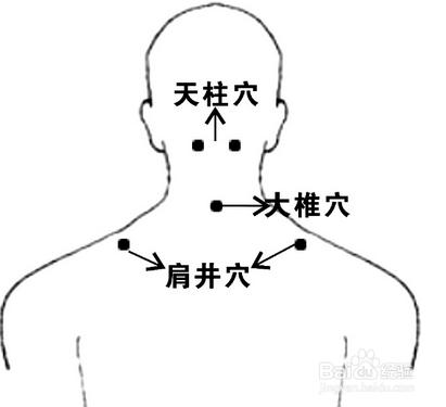 穴_肩井穴穴位位置图及作用