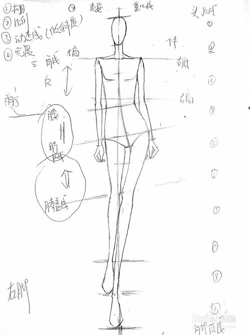 服装设计手绘步骤图(精品)图片