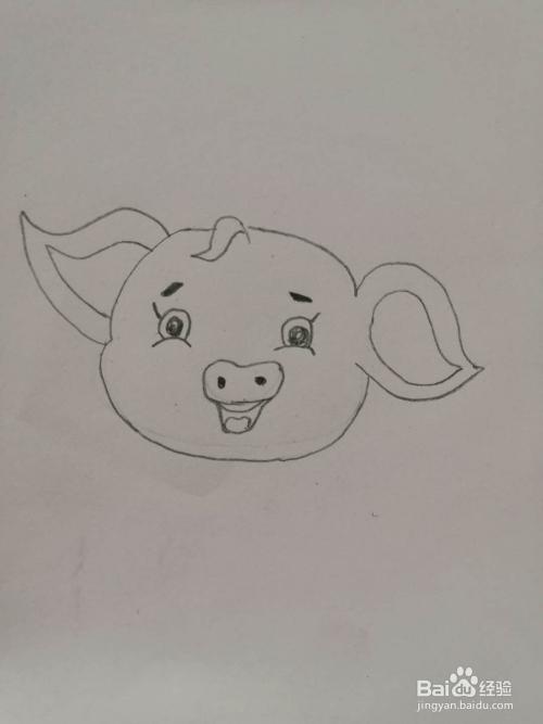 简笔画-如何画猪年小猪?图片