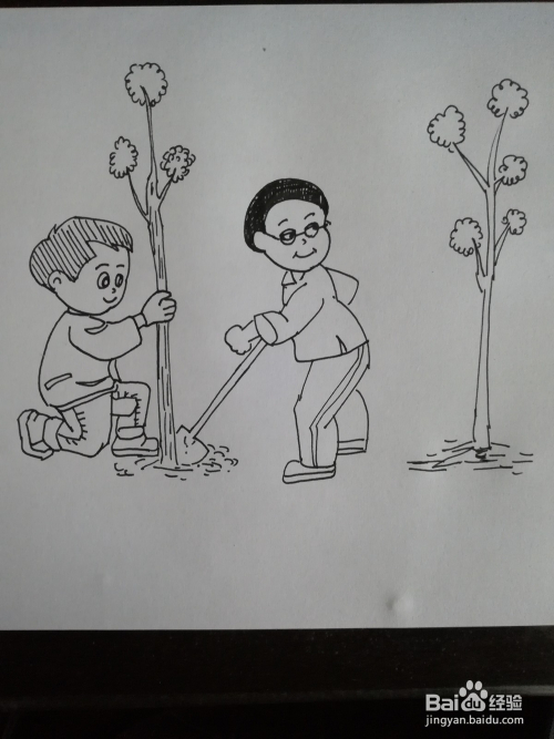 植树节儿童画,植树节卡通简笔画怎么画图片