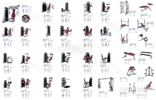 健身房用健身器材大全全系列图片