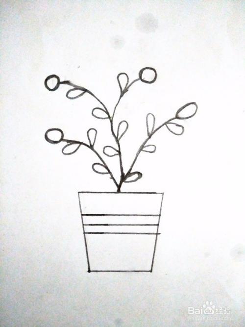 简笔画—简单可爱的盆栽花草图片
