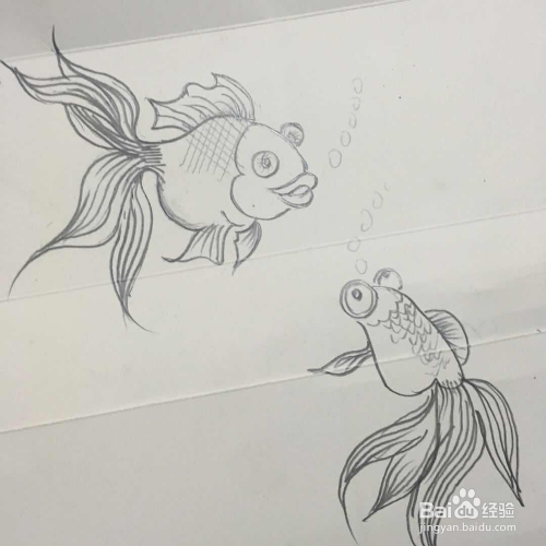 怎样画小金鱼的简笔画图片