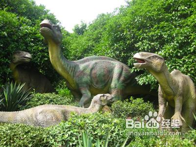 常州攻略园旅游恐龙及交通指南濑户内海旅游攻略图片