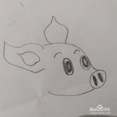 简笔画小金猪的画法.图片