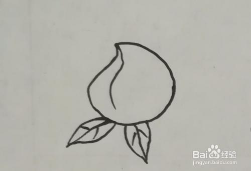 桃子的简笔画怎么画?按步骤图简单易学图片