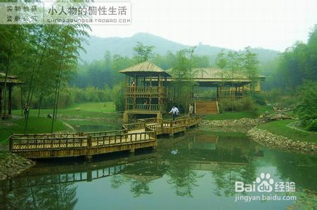 浙江哪里好玩景点排名_浙江安吉旅游景点