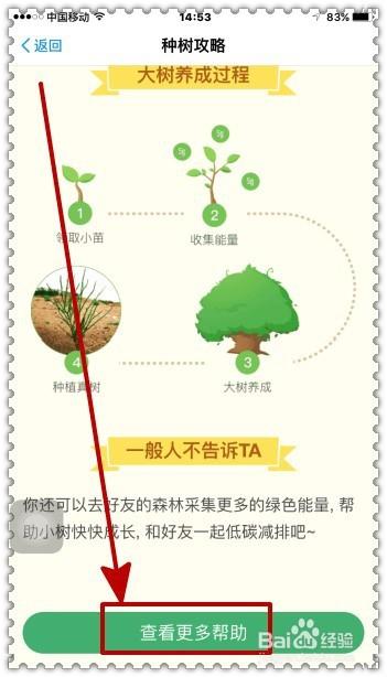 在v猴子宝的猴子森林种树?屌丝与攻略蚂蚁图片