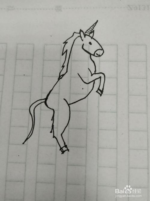 马的简笔画怎么画,怎么画一匹马