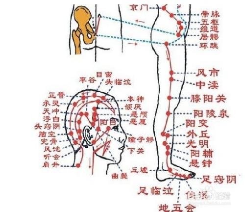日常瘦身妙招减肥方法小瘦腿之筋络v妙招中怎么瘦身图片