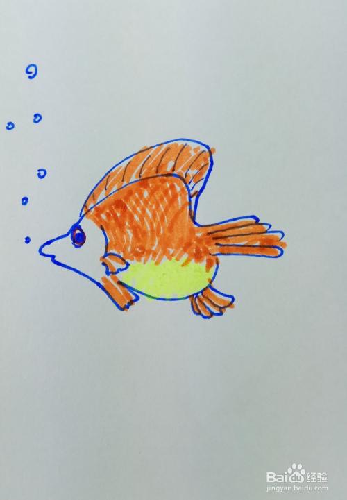 """怎样画儿童简笔画""""漂亮的扁鱼""""?"""