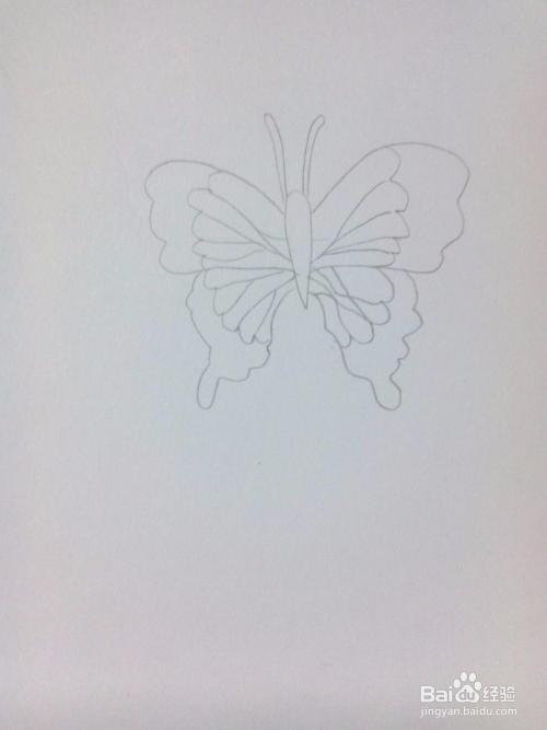 com 方法/步骤 1 第一步,用铅笔画蝴蝶身体和触角.图片