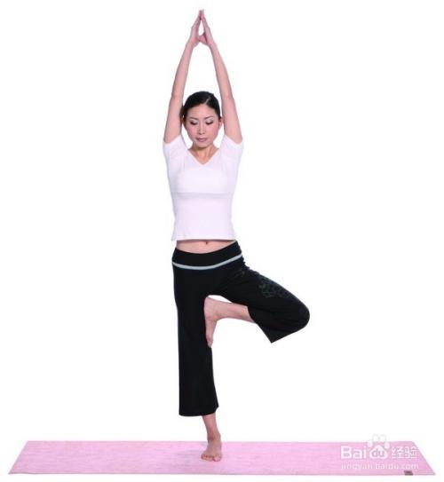 瑜伽树式介绍图片