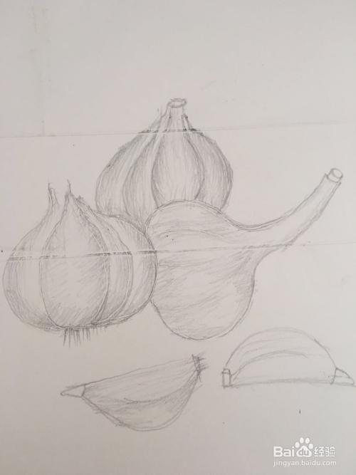 一组大蒜的简笔画怎么画图片