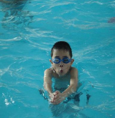 游泳初學者小竅門圖片