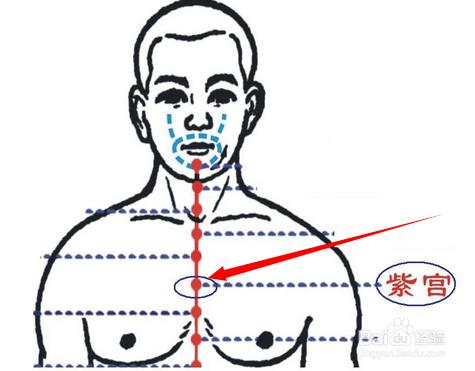 紫宫穴位位置图及作用