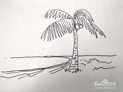 怎么在画海边椰子树风景画速写/卡通简笔画?